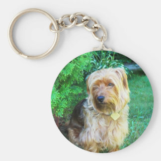 Just another day for a Silky Yorkie Terrier Keychain