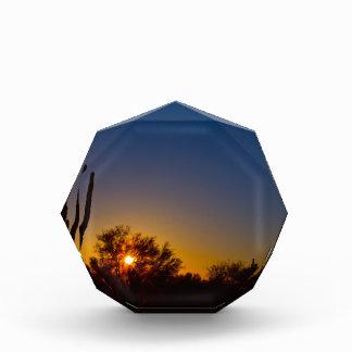 Just Another Sonoran Desert Sunrise.jpg Acrylic Award