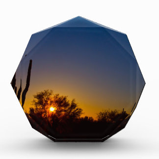 Just Another Sonoran Desert Sunrise.jpg Award