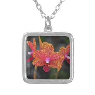 Just Another Sunday Silver Plated Necklace