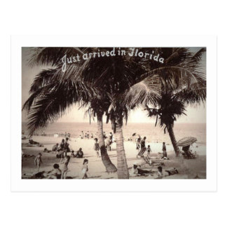Just Arrived in Florida! Vintage Postcard