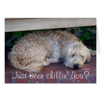 Just been chillin', you? Notecard by Brad Hines