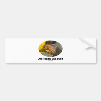 Just Being Bee Busy (Bee On Yellow Flower) Car Bumper Sticker