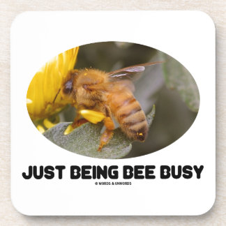 Just Being Bee Busy (Bee On Yellow Flower) Coaster