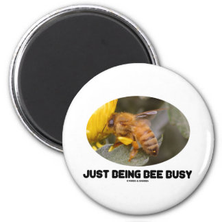 Just Being Bee Busy (Bee On Yellow Flower) 2 Inch Round Magnet
