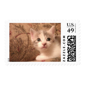 Just Being Cute Postage