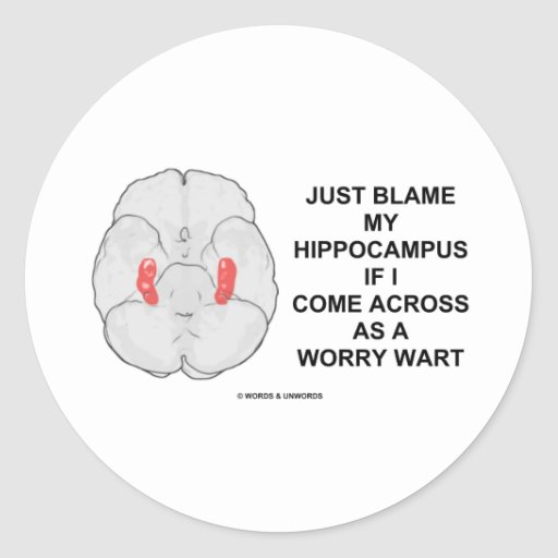Just Blame My Hippocampus Come Across Worry Wart Classic Round Sticker