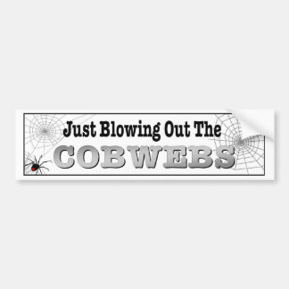 Just blowing out the cobwebs funny travelling bumper sticker