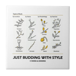Just Budding With Style (Types Of Buds) Ceramic Tiles