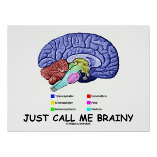Just Call Me Brainy Anatomical Brain Attitude Posters