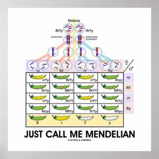 Just Call Me Mendelian (Punnett Square Genetics) Poster