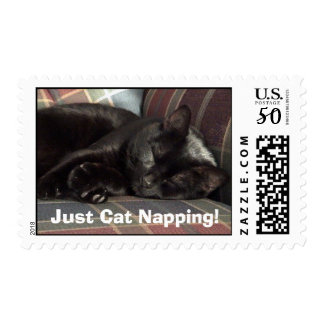 Just Cat Napping Postage