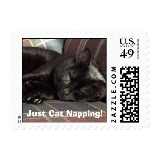 Just Cat Napping Postage - Customized