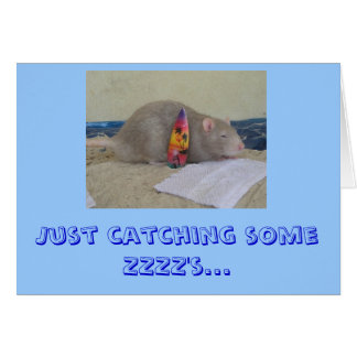 Just catching some ZZZZ's... Stationery Note Card