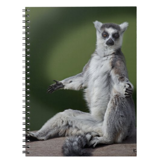 Just Chill Notebook