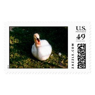 Just Chillen' Postage Stamp