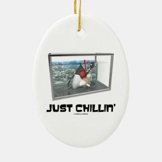 Just Chillin' (Java Duke Snorkeling Fish Tank) Christmas Ornaments