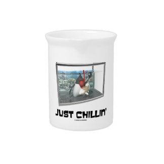 Just Chillin' (Java Duke Snorkeling Fish Tank) Beverage Pitchers