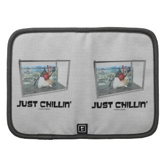 Just Chillin' (Java Duke Snorkeling Fish Tank) Organizer
