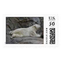 Just Chilling After Cool Dip Polar Bear Postage