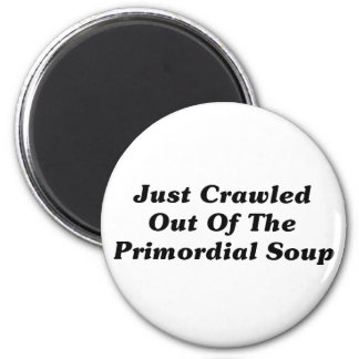 Just Crawled Out Of The Primordial Soup 2 Inch Round Magnet