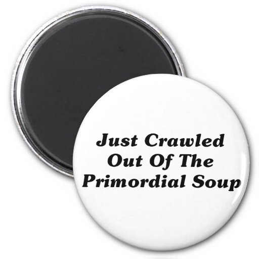 Just Crawled Out Of The Primordial Soup Fridge Magnets