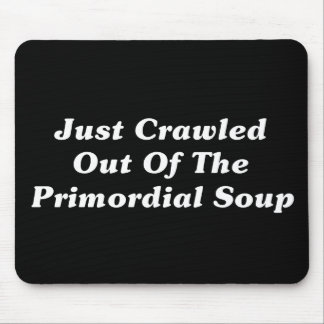 Just Crawled Out Of The Primordial Soup Mouse Pad