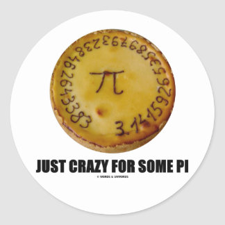 Just Crazy For Some Pi Pi Pie Math Humor Round Stickers