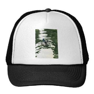 """""""Just Ducky"""" by Iain Stewart Trucker Hat"""