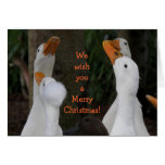 Just Ducky Christmas Holiday Greeting Card