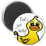 Just ducky! Magnet Magnets