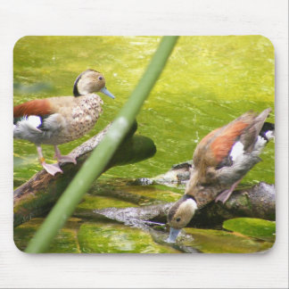 Just Ducky! Mouse Pad