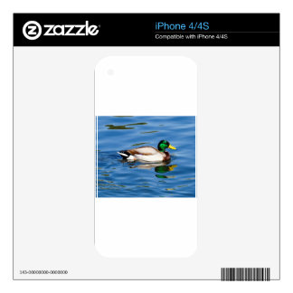Just Ducky iPhone 4 Decal