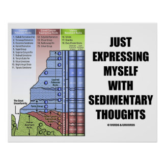 Just Expressing Myself With Sedimentary Thoughts Poster