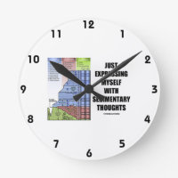 Just Expressing Myself With Sedimentary Thoughts Round Wallclock