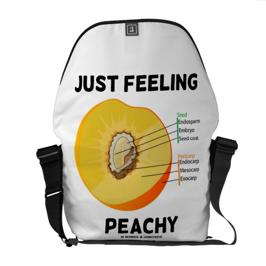 Just Feeling Peachy (Peach Anatomy Humor) Messenger Bag