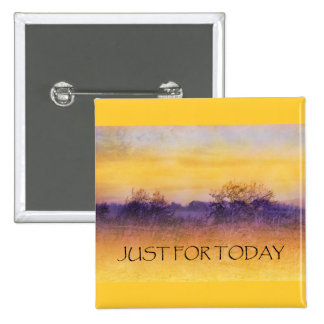 Just for Today Field Pinback Button