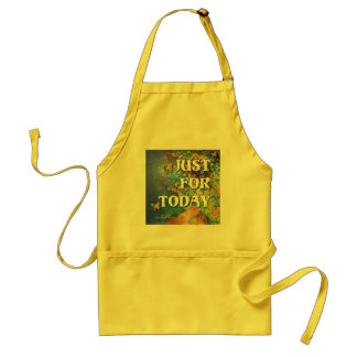 Just for Today Flowers and Rocks Adult Apron