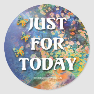 Just for Today Flowers and Rocks Classic Round Sticker