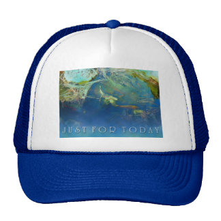 Just For Today Koi Pond Trucker Hat