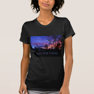 Just For Today Spring Sunrise Tee Shirts