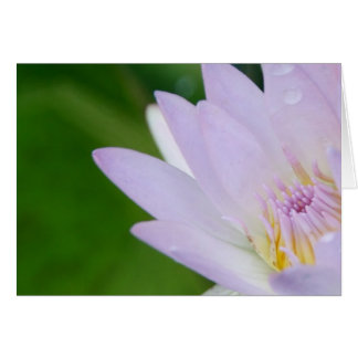 Just For You/Lotus in Photography Card