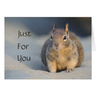 Just For You Squirrel Card