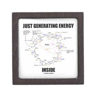 Just Generating Energy Inside Biochemistry Krebs Premium Jewelry Boxes