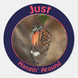 Just Hangin' Around Sticker