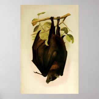JUST HANGING AROUND (bat) ~ Poster