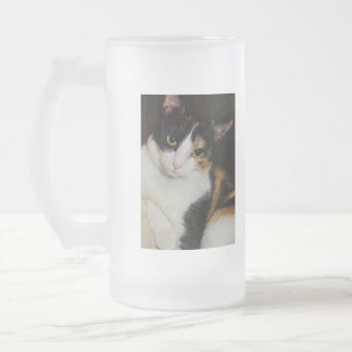 Just Hanging Around Frosted Glass Beer Mug