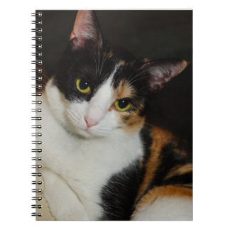 Just Hanging Around Notebook