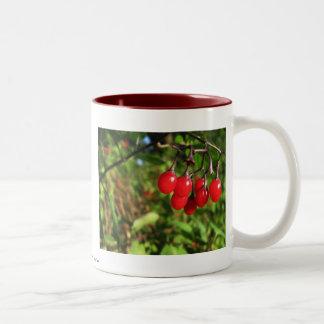 Just Hanging Around Two-Tone Coffee Mug
