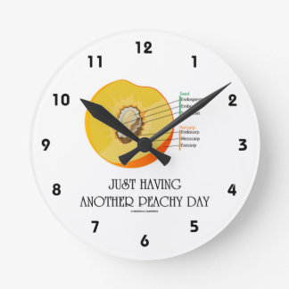 Just Having Another Peachy Day (Peach Anatomy) Round Wall Clocks